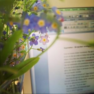 Novell + blomma