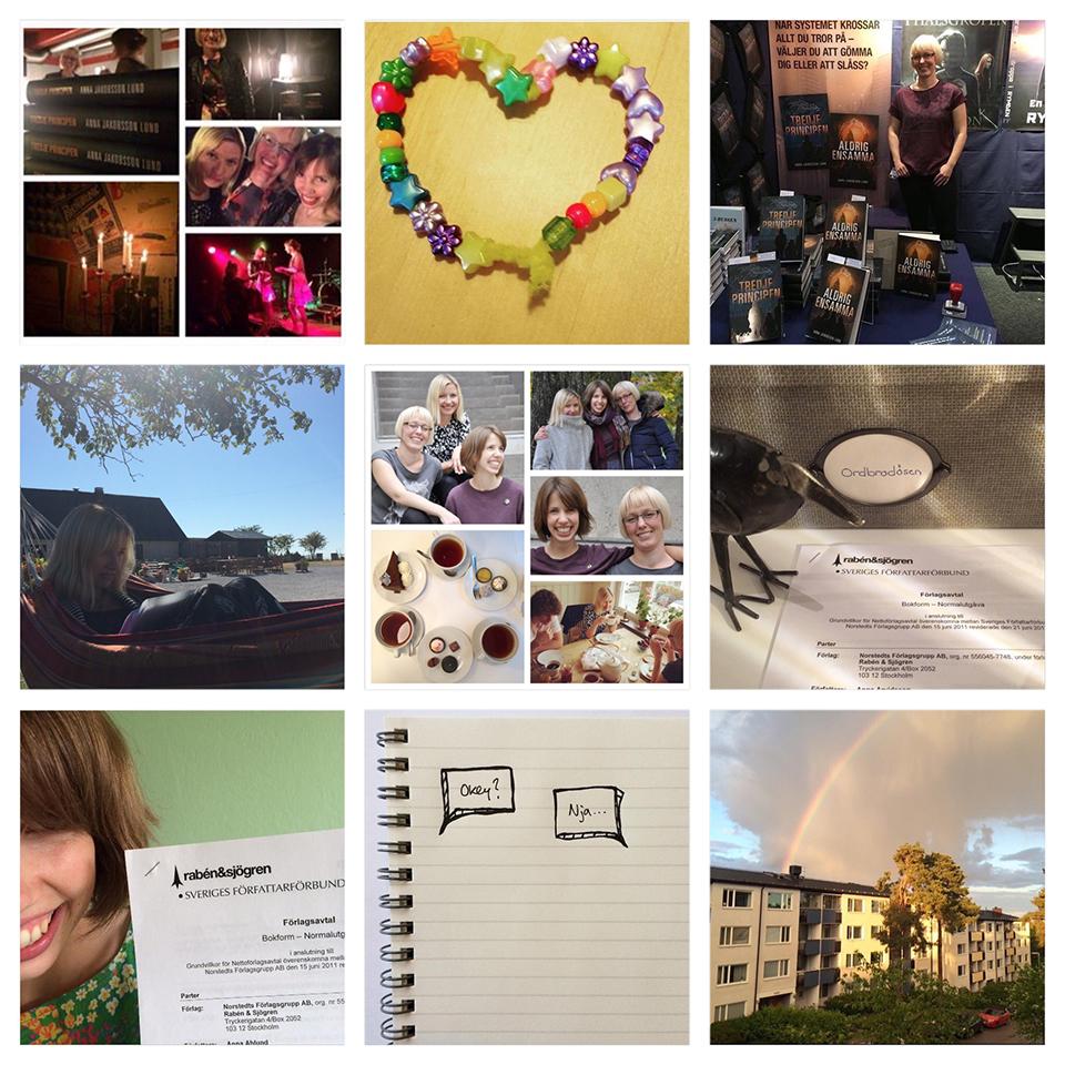 Nio bilder som sammanfattar vårt 2015